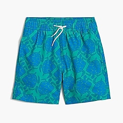 Boys' swim trunk in turtle print