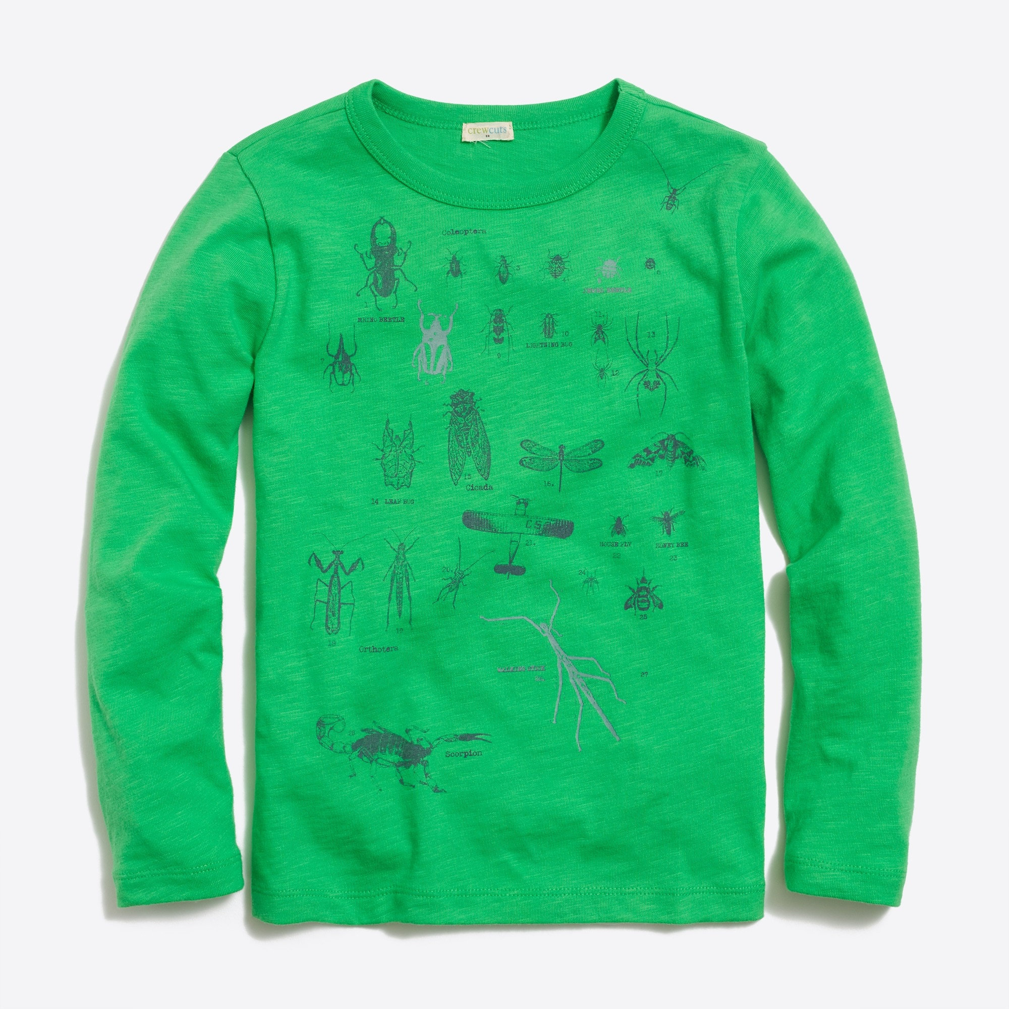 boys' long-sleeve glow-in-the-dark bugs graphic t-shirt : factoryboys graphics