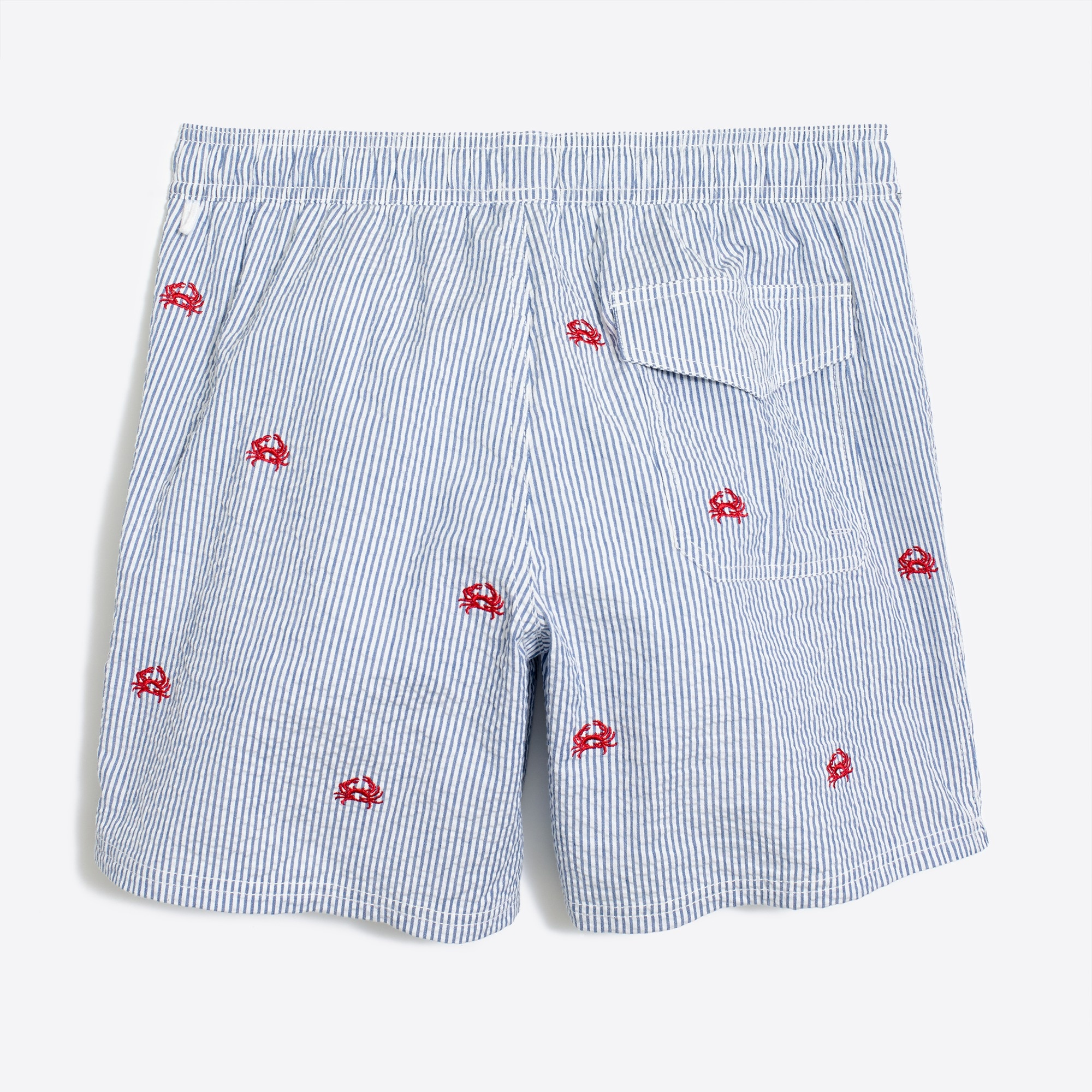 "6"" embroidered seersucker swim short"