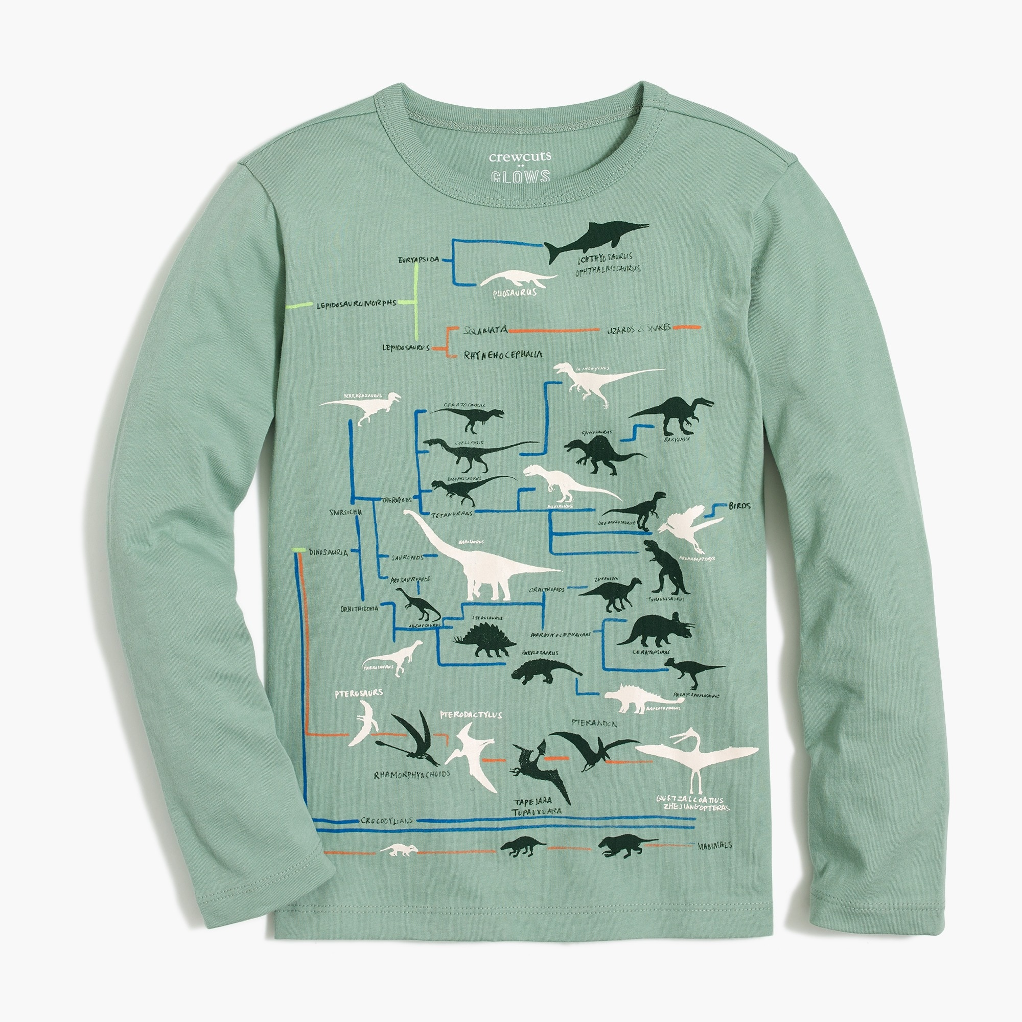 factory boys Boys' long-sleeve dinosaur chart glow-in-the-dark graphic T-shirt