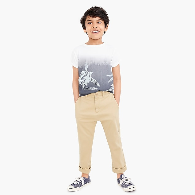 j.crew factory: boys' skinny-fit pant in flex chino